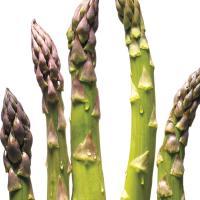Quick Asparagus Tart